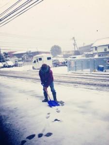 雪だけど元気に営業中
